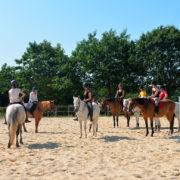 Jeux équestres au centre équestre